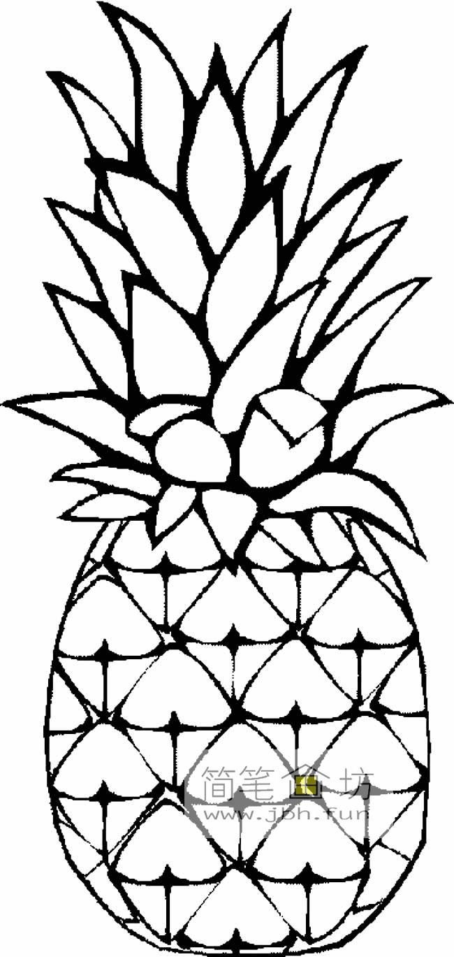 5幅菠萝简笔画图片欣赏
