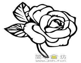 玫瑰花的简笔画图片2幅