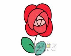 图解玫瑰的彩色简笔画画法