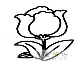 3幅简笔画玫瑰图片素材