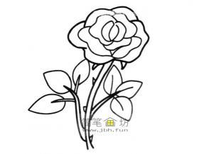 玫瑰的简笔画画法图片1幅