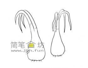 简单的蒜苗的简笔画图片