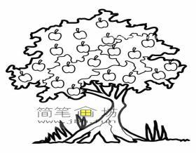 苹果树简笔画素材1幅
