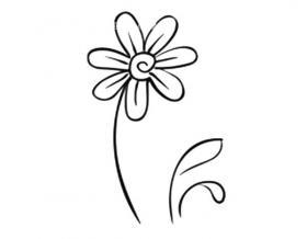 美丽的小花简笔画