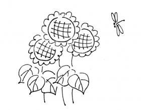 美丽的向日葵简笔画图片