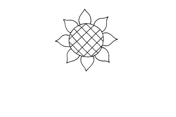 简单好看的儿童简笔画太阳花的画法步骤教程(3)