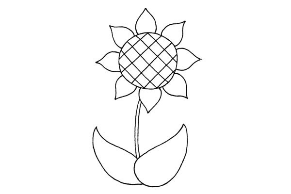 简单好看的儿童简笔画太阳花的画法步骤教程(4)