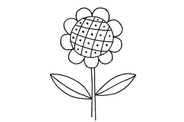 简单好看的儿童简笔画太阳花的画法步骤教程(5)