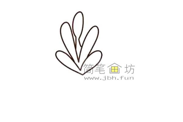 多肉植物的简笔画画法教程【彩色】(2)
