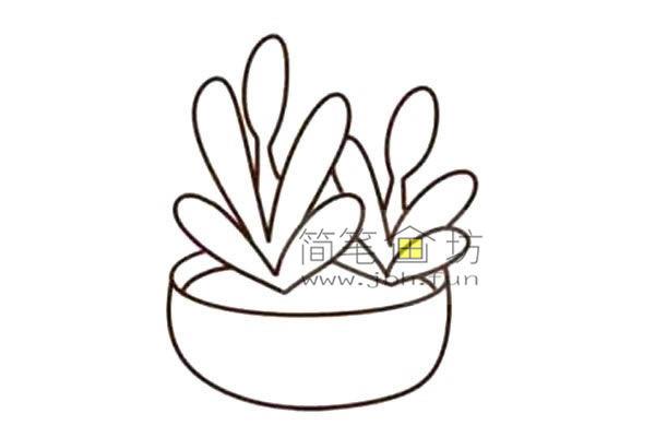 多肉植物的简笔画画法教程【彩色】(5)