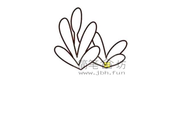 多肉植物的简笔画画法教程【彩色】(3)