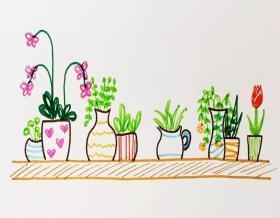 一组小清新植物简笔画绘画教程【彩色】