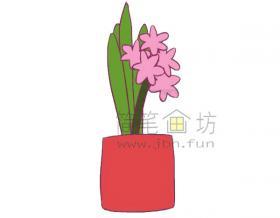 风信子简笔画绘画步骤教程及图片大全【彩色】