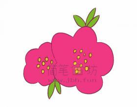 美丽的海棠花简笔画绘画步骤【彩色】