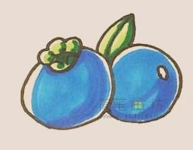 美味的蓝莓简笔画画法步骤教程【彩色】
