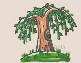 长势喜人的柳树简笔画画法【彩色】
