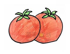 红彤彤的西红柿简笔画画法【彩色】