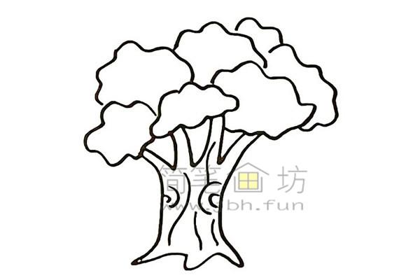 教你画大榕树简笔画简笔画【彩色】(5)