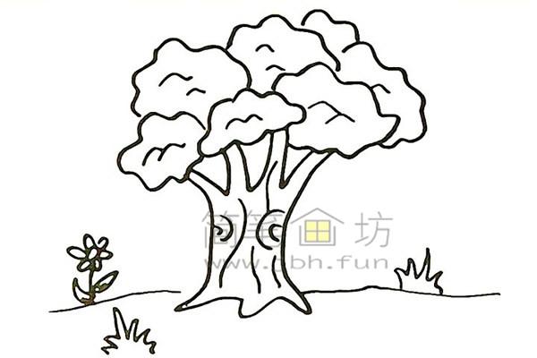 教你画大榕树简笔画简笔画【彩色】(9)