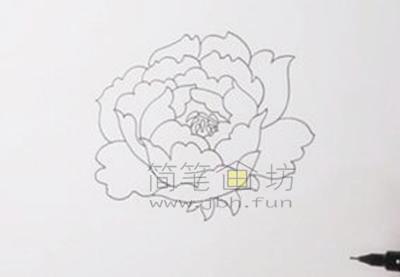 教你画一朵美丽的牡丹花【彩色】(2)
