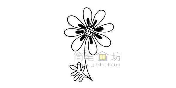 菊花简笔画绘画步骤(5)