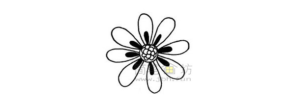 菊花简笔画绘画步骤(4)