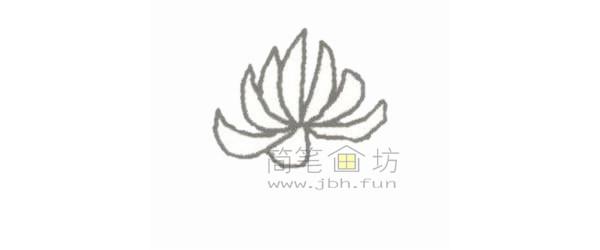 菊花简笔画步骤图解教程【彩色】(1)
